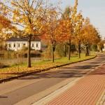 Schönfeld Zentrum