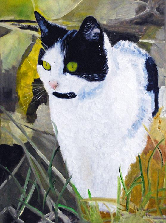 Katze Julchen